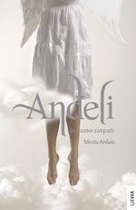 Merita Arslani: Anđeli će samo zaspati